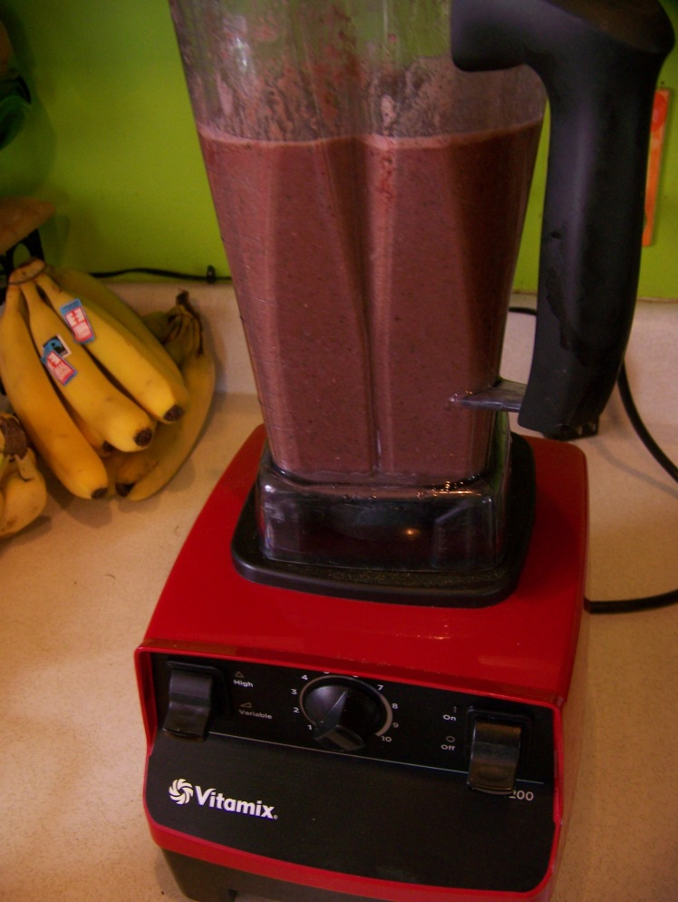 I think the Vitamix was one of the best investments we have ever made.