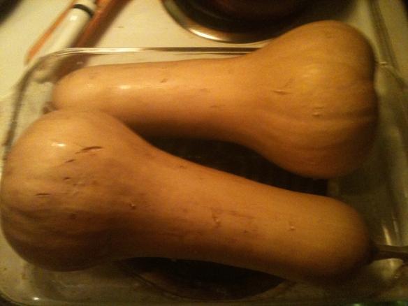 I use a Pyrex Glass Baking Dish