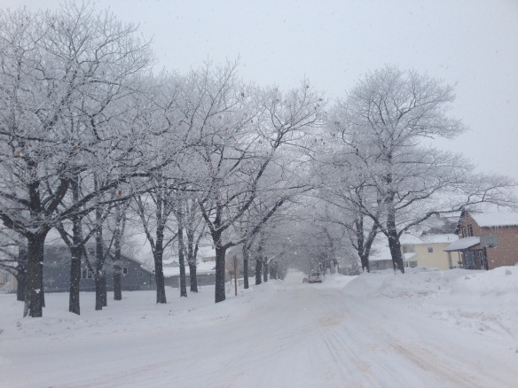 Our snowy street.