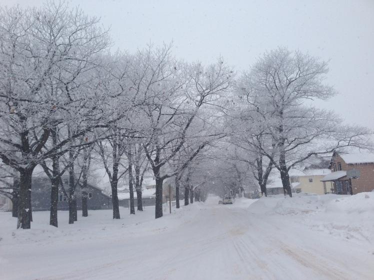 Our snowy street.