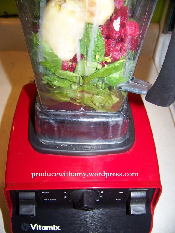 "I will soon be celebrating our Vitamix's ""One Year Anniversary."" How did we ever live without it?"