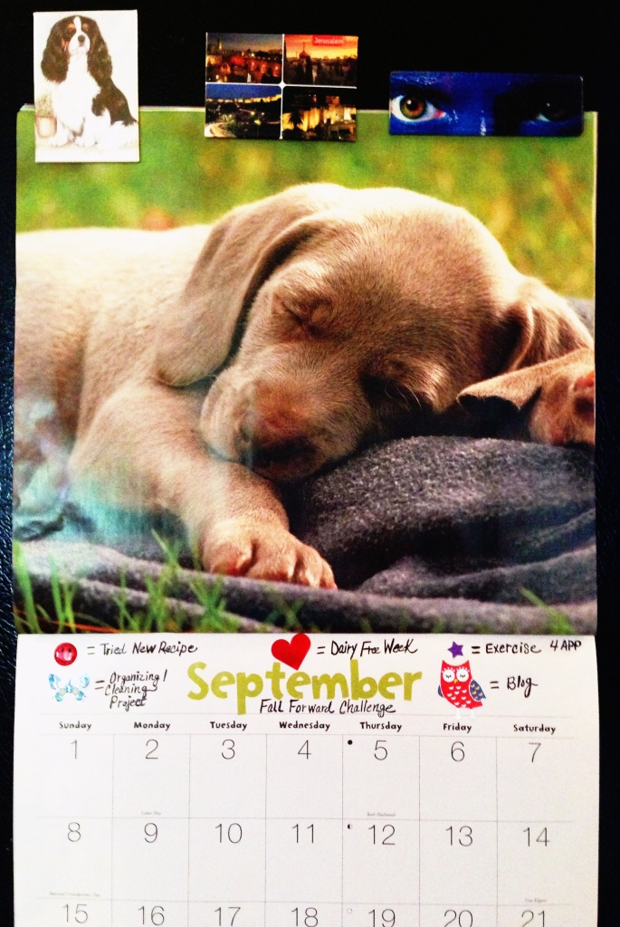 The puppy napping on my calendar is a reminder that I need to be productive during my waking hours so I can get 7-8 hours of sleep each night. Sleep, like whole, non-processed food = FUEL