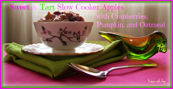 Sweet & Tart Slow Cooker Apples with Cranberries, Pumpkin, and Oatmeal