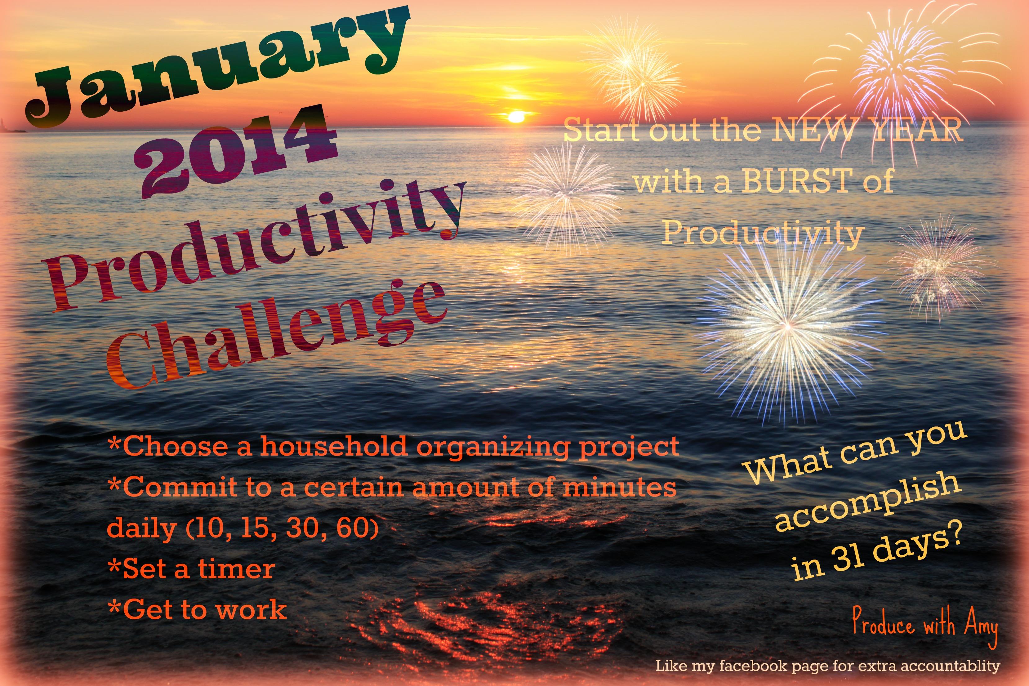 2014 Productivity Challenge