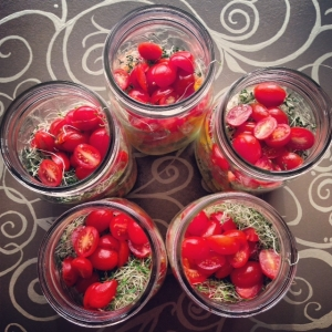 My Mason Jar Salad Prep
