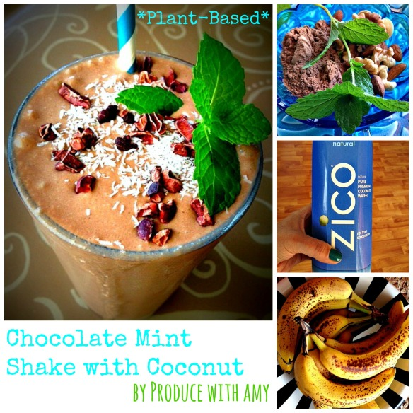 Plant-Based Chocolate Mint Shake with Coconut by Produce with Amy