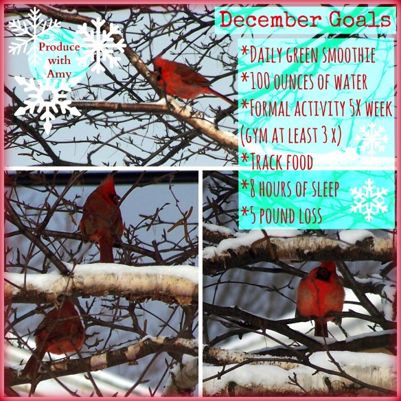December Goals by Produce with Amy