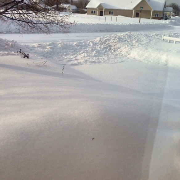 This was our driveway this morning with fresh snow piled up.