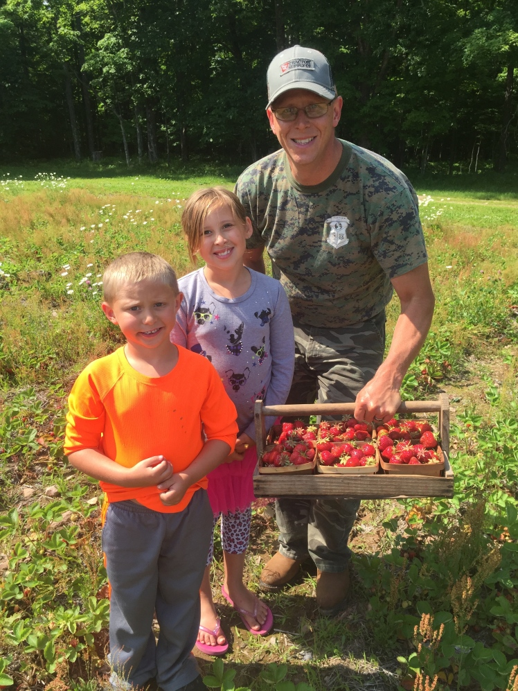 We picked strawberries in Trenary the day after our wedding!