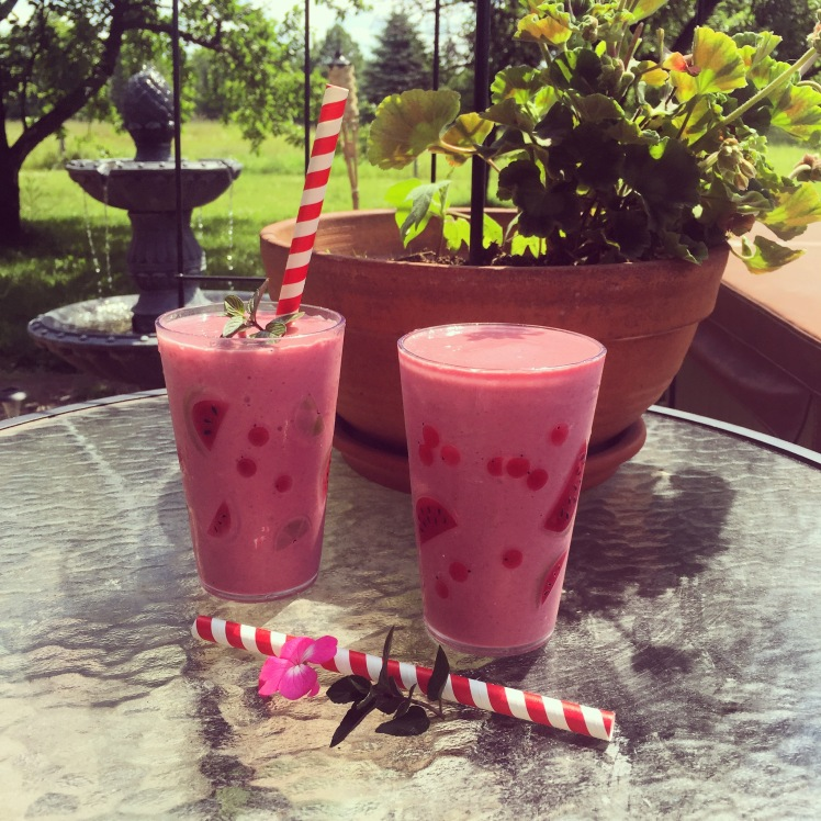 Avalon's Red Berry Smoothie