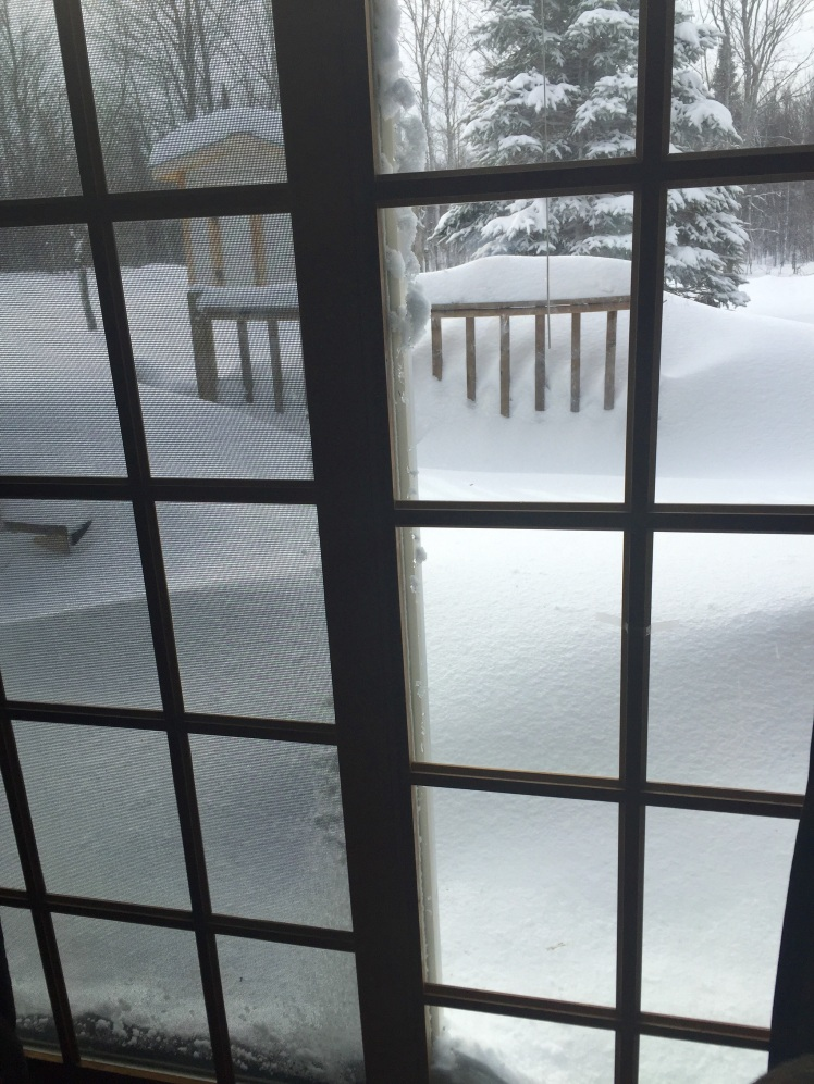 John, Lukas, and I shoveled the deck last week and it is drifted over after last night's storm. We just bought a new motor for our hot tub so we will be enjoying the deck again next week. Shoveling = exercise.