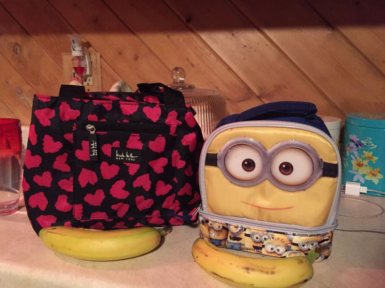Avalon and Lukas started a mutiny about school hot lunch so we bought them new lunch bags for Valentine's Day. I always send a snack with them to school but it's complicated because their school is nut free.