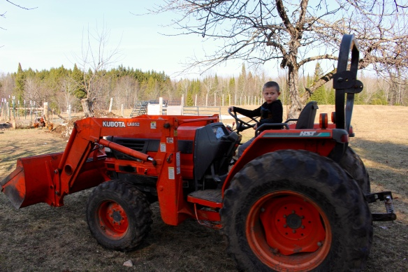 Lukas learning to drive the tractor.