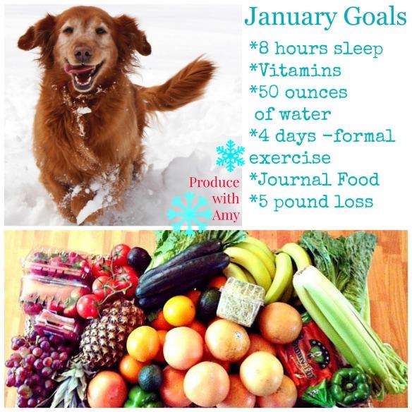 january-goals