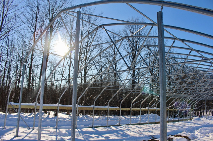 John has put HOURS into setting up our new hoop house. We are eager for spring to start planting vegetables.
